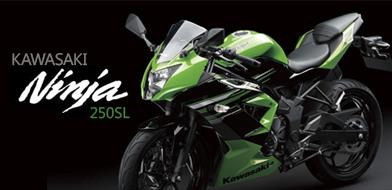 Kawasaki Ninja 250SL details, specifications, photos and price in india